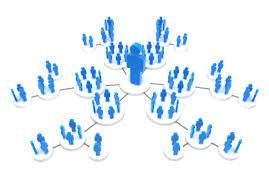 Social Media Trends -