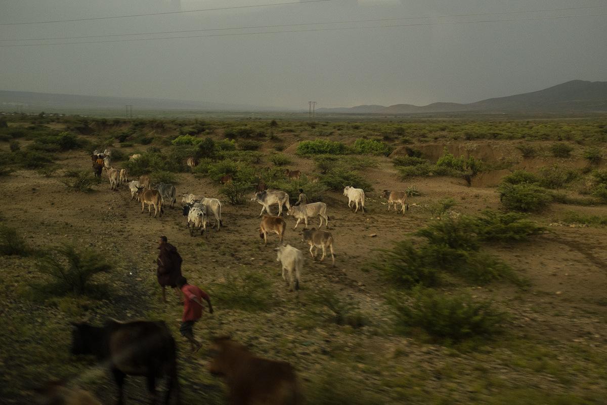 Adrienne Surprenant - Ethiopie, 2016
