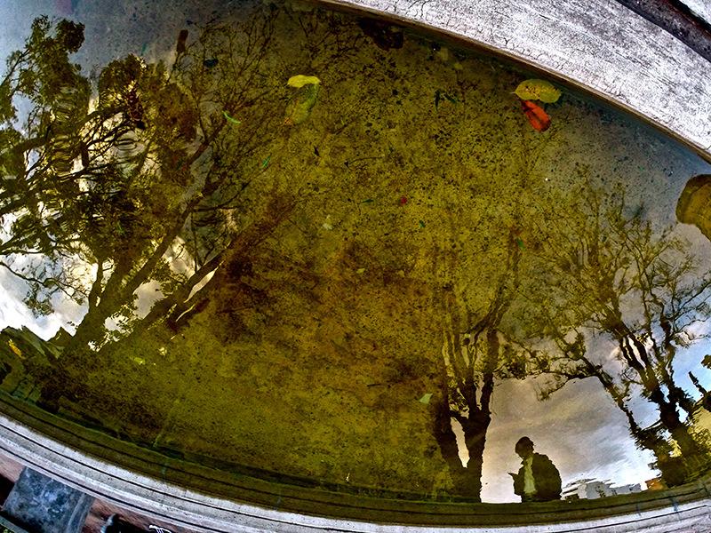 olivia pino photography - Bogota, Colombia