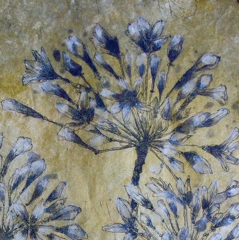 DIANA DAYMOND ART AND DESIGN - AGAPANTHUS FIELD DETAIL