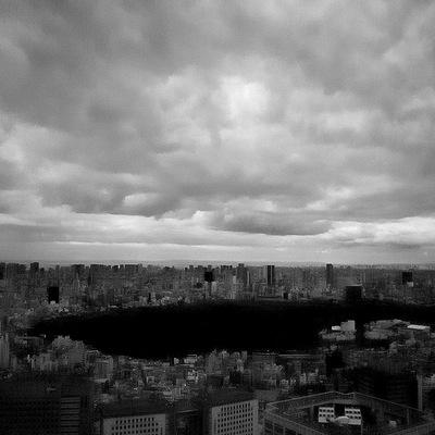 Toshiya Watanabe / 渡部敏哉