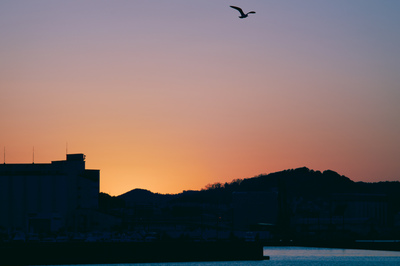 Takahiro Miyakoshi is a photographers in Japan